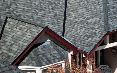 Roof Shingle Buying Guide